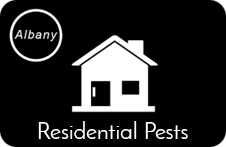 Residential Pest Control London