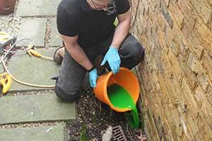 Pest Control Surveys for Rats