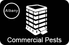 Commercial Pest Control London