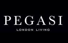Pegasi Logo