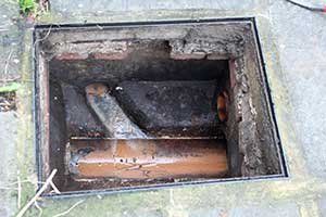 pest control understanding of drains